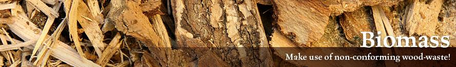 page-biomass-en
