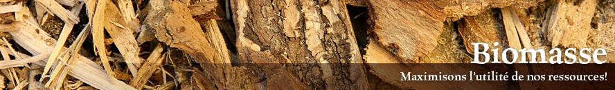 page-biomasse_fr